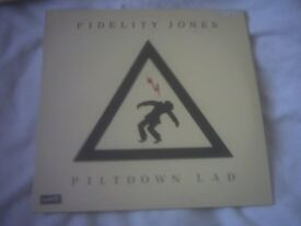 Vinyl LP Piltdown Lad – Fidelity Jones Dischord 41 France Pressing Dischord Records Stereo 1989