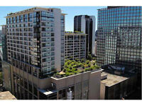 Downtown Fully Furnished Apt Rental at Electric Ave