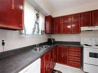 OPEN House 2-4PM-3BR+1  Semi-Detached Brampton