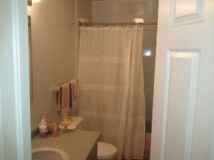 Close to Trent U; Room for male student or male young profession Peterborough Peterborough Area image 3