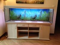 Rena Aqualife 600 Fish Tank complete with Cabinet, Filter and Air Pump