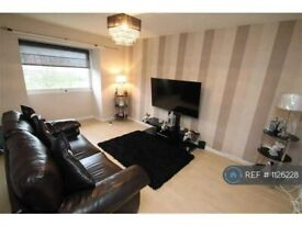 1 bedroom flat in Lulworth Court, Dundee, DD4 (1 bed) (#1126228)