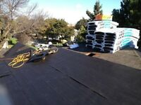 Professional roofing team with premium quality lowest price