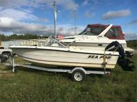 2008 EVINRUDE ETEC 115HP FITTED ON TO 1995 SEA PRO Timmins Ontario Preview
