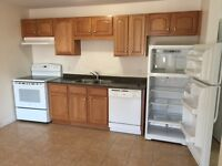 235 LEWISVILLE ROAD ***NEW*** $725