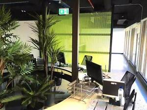 Crows Nest - Dedicated desk in a relaxed, sociable space Crows Nest North Sydney Area Preview
