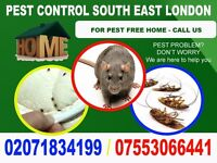 Pest & Vermin Control? Don't Worry - Call us for elimination - Bromley, Orpington, Sidcup, Greenwich