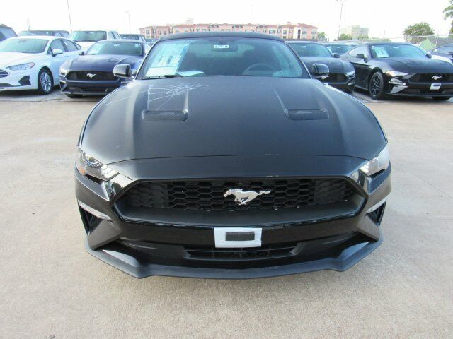 Owner 2019 Ford Mustang EcoBoost 5 Miles Shadow Black 2dr Car Intercooled Turbo Premiu