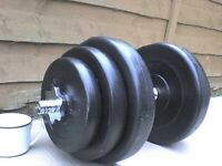 43 lb 19.5 kg Spinlock Dumbbell Barbell Weights - Heathrow