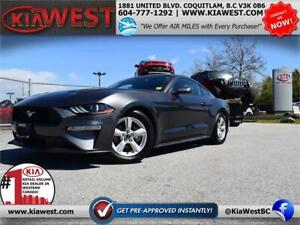 2019 Ford Mustang Fastback ECOBOOST 2.3L