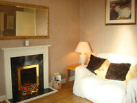 Ref 507: Cosy one bedroom in great decorative order on Albert Street, Leith Walk, avail 24th Nov