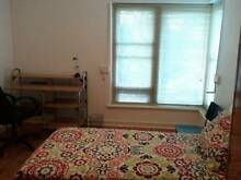 MAGILL –  Large room available now Magill Campbelltown Area Preview