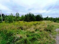 Lot 11-1 Rte 134  Shediac Cape, NB E4P 3G8 - 1.5 Acres