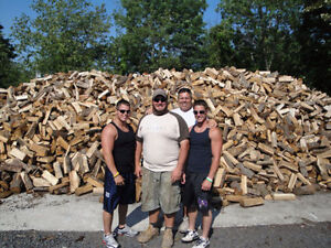 4 guys firewood $ 245 Dry split and delivery total 401-3794