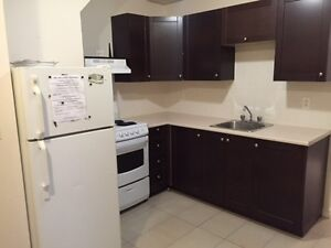 Amazing 2 bedroom apartment steps from McGill University!