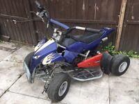 Mini Moto and Quad