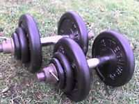 Metal Dumbbell barbell Weights and Bars 66 lb's 30 kg approx