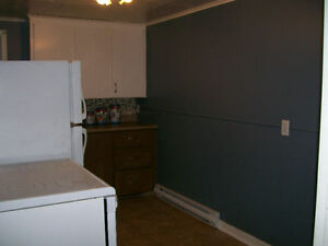 One Bedroom Funished Apartment in Mount Pearl