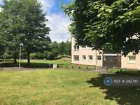 4 bedroom flat in St Mungo Avenue, Glasgow, G4 (4 bed)
