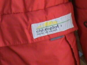 manteau chlorophyle