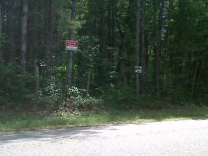 BEAUTIFUL WOODED LOT FOR SALE