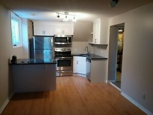 Stunning & updated 1 bedroom West end unit on Davis Drive