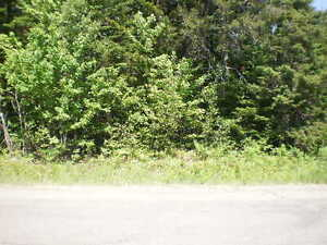 Rexton/Jardinville land for sale