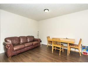 STUDENT ROOMS FOR RENT GROUPS OR INDIVIDUALS WELCOME !!! Kitchener / Waterloo Kitchener Area image 4
