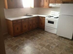 Large 2 Bedroom Basement Apartment - All Utilities Included