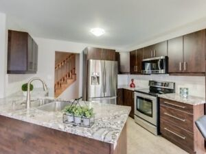 Full Luxury Detached Home For Rent By Mount Pleasant Go Station!