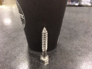 Stainless Steel Lag Screws CLEARANCE