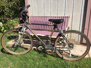 FINAL PRICE  Raleigh Traveler Model Bicycle