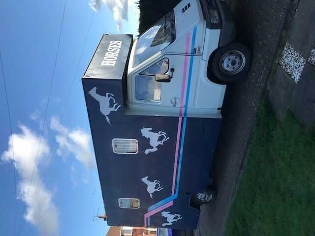 3.5t Renault Master Horsebox for Sale - 8ft 7in head room
