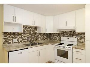 3 Rooms in Newly renovated, Immaculate and Spacious Apt