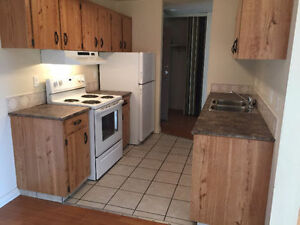 2 bedroom apt in Elevator building Feb,March,April,May half free