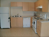 Spacious 1 bedroom apartment available for sublet immediately