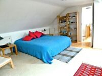 Large Room with own kitchen in warm peaceful house, Perivale, West London