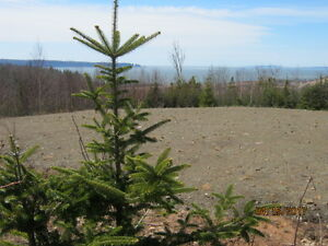 Panoramic 25 acre waterview, Parrsboro, NS