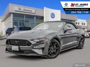 2018 Ford Mustang GT Premium 5.0L, CLEAN CARFAX, LEATHER, NAVIGA