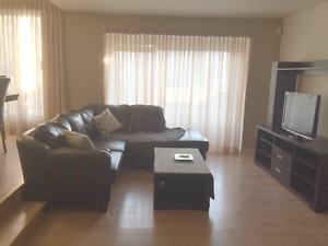 Looking for roommate