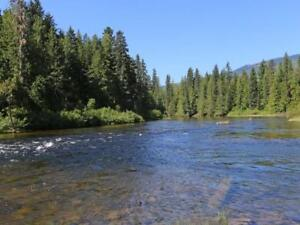 5+Acres N. Barriere Lk Freehold, Sm Cabin 4RV's inc