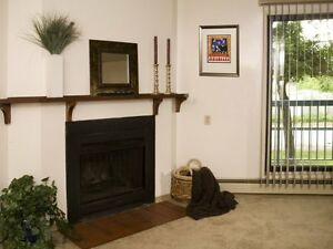 FREE JAN. RENT!!!-  1, 2, 3 bedroom suites, Storage- Balcony