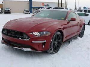 2018 Ford Mustang ECOBOOST, 101A, 2.3L, RWD, SYNC3, REAR CAMERA,
