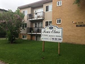 1 Bdrm. Apt.  - Adult only - Don't pay rent until the New Year! Edmonton Edmonton Area image 1