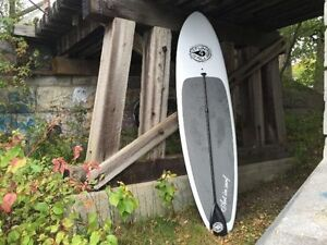 "New. Stand Up Paddle Board Box Week Package from "" Art in Surf "" Kingston Kingston Area image 7"
