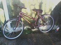 "ladies mountain bike sapphire professional 26"" wheels"