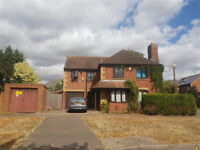 **** A STUNNING FOUR BEDROOM HOUSE AVAILABLE TO RENT IN ***WILLEN *** £1400.00PCM