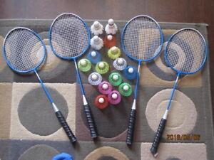 2 raquettes de badminton et moineaux