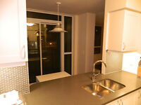 FURNISHED 2 BEDS CONDO - TORONTO DOWNTOWN RENTAL- 19 GRAND TRUNK