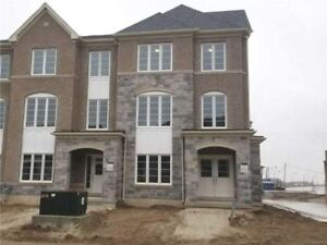 Whole House For Lease ~ Financial Dr / Mississauga Rd
